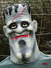 Frankenstein Sighting around Stevens Point, WI 10/15/2017 2:35PM (Craig Walkowicz) Tags: frankenstein monster creature portrait halloween funny humorous comical amusing silly ccw