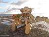 ダンボー&キングジョー (tsukasatan696) Tags: danboard revoltech kingjoe figuarts ultraseven ultraman americanvillage chatan okinawa toy figure outdoor 屋外撮影 野外撮影 toyphotography outdoortoyphotography