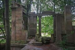 Ruinen im Wald (nordelch61) Tags: mecklenburg vorpommern insel rügen halbinsel jasmund sassnitz dwasieden wald schloss ruine 1948 gesprengt holz baum