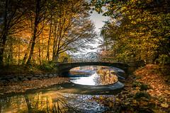 Autumn in the park (hjuengst) Tags: autumn fall fallcolors herbstfarben herbst munich bavaria october canal bridge nymphenburg park