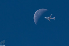 Hey!  That plane is about to hit the moon! (Jasper's Human) Tags: moon plane