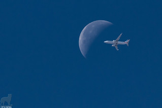 Hey!  That plane is about to hit the moon!