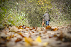 Autumn Walk (CoolMcFlash) Tags: autumn leaves person dog pet walk forest wood fall trees perspective perspektive pov pointofview focus canon eos 60d nature colors herbst herbstlich laub hund haustier gehen spazieren wald baum bäume blickwinkel dof depthoffield tiefenschärfe fokus fotografie photography natur woman frau candid tamron a007 2470