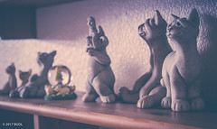 Meow 🐱 (BGDL) Tags: lightroomcc nikond7000 afnikkor2880mm13356g bgdl bedroom cats sculptures 7daysofshooting week16 shelfshelves macromonday