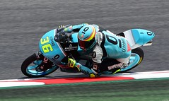 Honda / Joan MIR / SPA / Leopard Racing (Renzopaso) Tags: honda joan mir spa leopard racing campeón mundo moto3 2017 world champion joanmir leopardracing campeóndelmundo campeóndelmundodemoto3 campeóndelmundodemoto32017 moto3worldchampion2017 moto3worldchampion worldchampion motor motorsport bike race photo picture