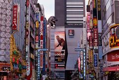 Pic0051 (exposurecontemplation.wordpress.com) Tags: shinjuku tokyo japan film nikon em 75150mm ais fuji superia 400 35