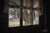 Tattered Edge (Linda O'Donnell) Tags: yellowdogvillage miningtown ghosttown abandonedamerica abandonedplacesinamerica abandonedbuildings vintagehouse abandonedplacesinpa interior curtain window