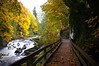 A walk into fall (Christine Wendlendt) Tags: tumwater falls water river rapids trees