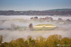Newgrange and Knowth in the fog (mythicalireland) Tags: newgrange knowth monuments fog mist morning boynevalley trees landscape