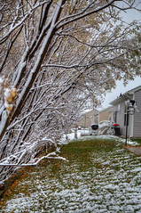 First Snow 10-27-2017 001 (wogggieee) Tags: bear lake mn minnesota white whitebearlake colors county fall hugo pretty ramsey snow trees washington winter