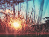 Get ready for a new day! (BigWhitePelican) Tags: helsinki finland sunrise morning sun canoneos70d adobelightroom6 niktools 2017 october