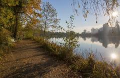 Morning Mist (Clayton Perry Photoworks) Tags: vancouver bc canada fall autumn explorebc explorecanada skyline sunrise leaves trees colour stanleypark lostlagoon reflections