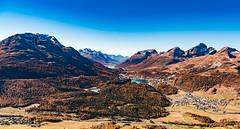 Pearl of the Alps (Swiss.PIX) Tags: suíça svizra switserland schweiz switzerland sony suisse suiza svizzera szwajcaria švýcarsko švice stmoritz moritz engadin engadina pearl perle alpenperle alp alpen alps alpine autumn herbst muottas muottasmuragl muragl graubünden graubunden grison mountain mountains myswitzerland celerina schlarigna silvaplanersee silvaplana silsersee sils segl lejdasegl nietzsche lejdasilvaplauna silvaplauna