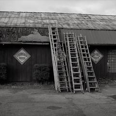 Portland (austin granger) Tags: portland ladders oregon shop stack time evidence weathered decay sidewalk street tools square film gf670