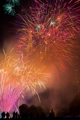 2017 Himley Fireworks -7141 (timbertree9) Tags: himley himleyhouse himleyhall fireworks fire sky skyatnight darksky pyrotechnics unitedkingdom dudley dudleycouncil colour colourful colours sparkle heart explode longexposure funfair rides girlpower localauthority lightingup aesthetic display entertainment noise light smoke trails guyfawkes night illuminated people fair fairground heartfm white rockets bangs sound
