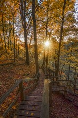 Stairway to Heaven (Bernie Kasper (2.5 m views)) Tags: art berniekasper bridge cliftyfallsstatepark cliftyfalls color d600 effect family fall hiking indiana jeffersoncounty landscape light leaf leaves madisonindiana madisonindianacliftyfallsstatepark madison nature nikon naturephotography new outdoors outdoor old outside orange photography plant park raw red travel tree trees trail statepark staircase sunset sun