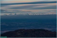 Alpes Bernoises depuis Grand-Ballon - Haut-Rhin (jamesreed68) Tags: canon eos 600d alps alpes mountain eiger jungfrau paysage nature grandballon hautrhin 68 grandest vosges