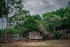 2017-10-04_02-45-06 (vlamiralvesbastos) Tags: vlamir conceiçaodaspedras minas rancho naureza nature naturaleza landscape tree
