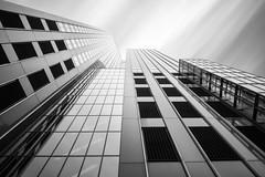 Maastoren mono (frank_w_aus_l) Tags: rotterdam maastoren skyscraper city fineart longexposure nikon d800 nikkor perspective lines architecture netherlands reflection bw monochrome noiretblanc blackandwhite zuidholland niederlande nl