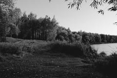 Abreuvoir (Alexander Oleynik) Tags: abreuvoir lake autumn glukhov осень глухов павловка
