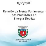 Reunião da Frente Parlamentar dos Produtores de Energia Elétrica