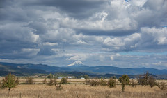 2017 Pac NW Lassen Volcanic-38 (Michael L Coyer) Tags: parks nationalparks usnationalparks unitedstatesnationalparks lassenvolcanicnationalpark lassen lassenvolcanic lassenvolcanicnatlpark mountain mount wilderness forest summit prairie field fence grassland grass snowcap cloud