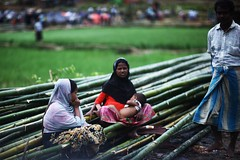 We Won't Sink (N A Y E E M) Tags: mother child family bamboo rohingya refugees street refugeecamp coxsbazaar bangladesh windshield genocide exodus ethniccleansing rohingyagenocide saverohingya crimesagainsthumanity