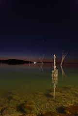 Pali by night (luc.feliziani) Tags: wood water lake night stars italy umbria trasimeno