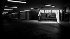 Into the Subway (Wilson Au | 一期一会) Tags: fujifilmxe2 fujinon xf1855mmf284rlmois hongkong ngautaukok blackandwhite monochrome light contrast subway street pedestrian