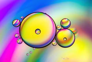 Rainbow Universe