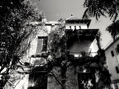 2017-10-20_12-04-32 (georgekells) Tags: oldbuilding house home overgrown ivy trees leaves foilage door windows balcony woodenshutters rooftiles street structure architecture contrast shadows dark bleak blackandwhite monochrome decay abandoned derelict empty uncropped salou oldtown spain travel