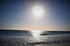 Praia Grande (uSimonato) Tags: arraial do cabo rj praia sol sunshine nikon d3300