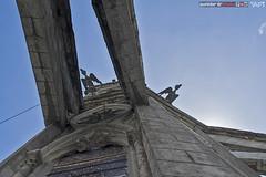 condors watch overhead (punkbirdr) Tags: api audy birds birding d7100 nikkor24mmf28af ecuador punkbirdrphoto quito