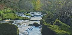Dartmoor Waters (simondayuk) Tags: dartmoor devon nikon d5300 kitlens river water