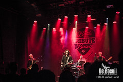 2017_10_27 Bosuil Battle of the tributebandsSUG_6337-Queens of the Stone Age Coverband Johan Horst-WEB