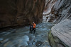 In the Thick of Things ... (NatureScapes007) Tags: zion narrows
