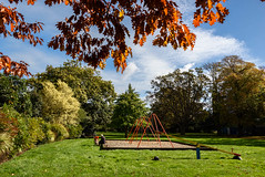 Out With Grandma (Jocey K) Tags: newzealand nikond750 southisland christchurch autumn risingholmegardens leaves playground people swings sky clouds