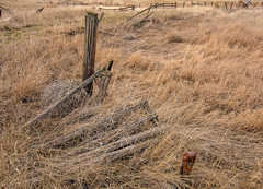 (garshna) Tags: fence posts decayed broken aabandoned