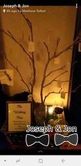 Snapchat Wishing Tree (apalapala) Tags: snapchat wishing tree ceviche josephjonswedding wedding party tampa soho fl florida hyde park
