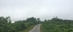 Myanmar, Yangon Region, Northern District, Taikkyi Township (Die Welt, wie ich sie vorfand) Tags: myanmar burma bicycle cycling yangonregion yangon rangoon northerndistrict elevenhills 11hills taikkyitownship taikkyi myself surly crosscheck
