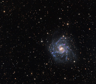 NGC7424 - the pretty version