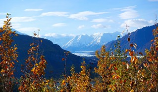 Matanuska Glacier in Autumn - (Explored)