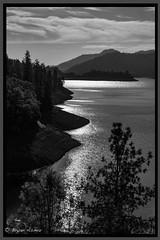 Mount shasta monochrome geo (bryanasmar) Tags: ngc leica m246 titanium summilux 50 14 shasta mountain blackandwhitw bw northen california road trip