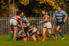 JK7D0191 (SRC Thor Gallery) Tags: 2017 sparta thor dames hookers rugby