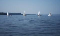 Ottawa River at Hudson (Richard Pilon) Tags: sailboat sailing ottawariver sailboats