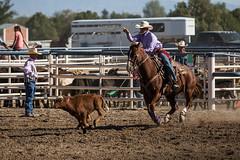 GY8A4653.jpg (Brad Prudhon) Tags: 8seconds 2017 allen arizona bareback barrel bell belt bit boots boy breakaway bronc buck buckle bull bulldogger bustin busting calf chase clown corral cow cowboys cowgirl days fall gate hat hazer header healer helmet horns horse jump kids lariat leap mutton october queen racing reins rex riders riding rodeo rope roping run saddle sheep spurs steer team teamwork tie twist wilcox wrestling