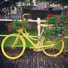 weekendje Delft - Augustus 2017 (Kristel Van Loock) Tags: bici bicycle fiets fietsen vélo biciclette bicicletta bike bicycles delft uitindelft visitdelft ilovedelft staddelft delftcity zuidholland holland nederland visitthenetherlands august2017 augustus2017 niederlande hollande olanda lespaysbas paysbas paesibassi paísesbaixos lospaísesbajos europe europa weekendjedelft weekendjenederland citytrip fahrrad bicicleta yellowbicycle gelefiets vélojaune yellow giallo