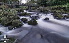 Tollymore flow (MarkMolloyImages) Tags: forrest parks shrubs stone bridge brown green autumn sony longexposure northernireland ireland leaves water woodland woods forest