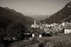 Soglio (Val Bregaglia) (Toni_V) Tags: m2405378 rangefinder digitalrangefinder messsucher leica leicam mp typ240 type240 35lux 35mmf14asphfle summiluxm hiking wanderung randonnée escursione sogliomaloja bergell valbregaglia alps alpen graubünden grischun grisons monochrome sep2 silverefexpro2 switzerland schweiz suisse svizzera svizra europe landscape summer sommer ©toniv 2017 170829