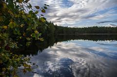 lake (Stefano Rugolo) Tags: stefanorugolo pentax k5 smcpentaxda1855mmf3556alwr lake reflection sky landscape nature foliage clouds september 2017 hälsingland sweden sverige wood tree water forest